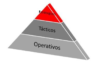 Figura 1: Niveles de Jerarquía Organizacional