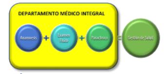 Ilustración 8. Gestión de Salud