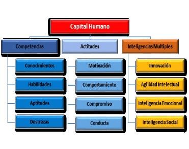 Ilustración 2. Componentes del Capital Humano