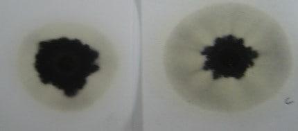 Presencia de glicol en la prueba de la gota de aceite