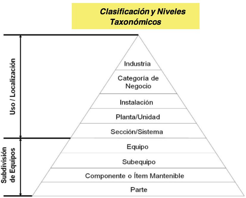 Figura 2.3. Clasificación Taxonómica y Niveles Taxonómicos.