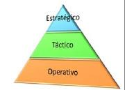 Figura 3. Niveles de una organización