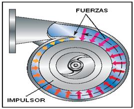 Figura N° 2-14.- Diagrama de una bomba con carcasa tipo voluta simple.